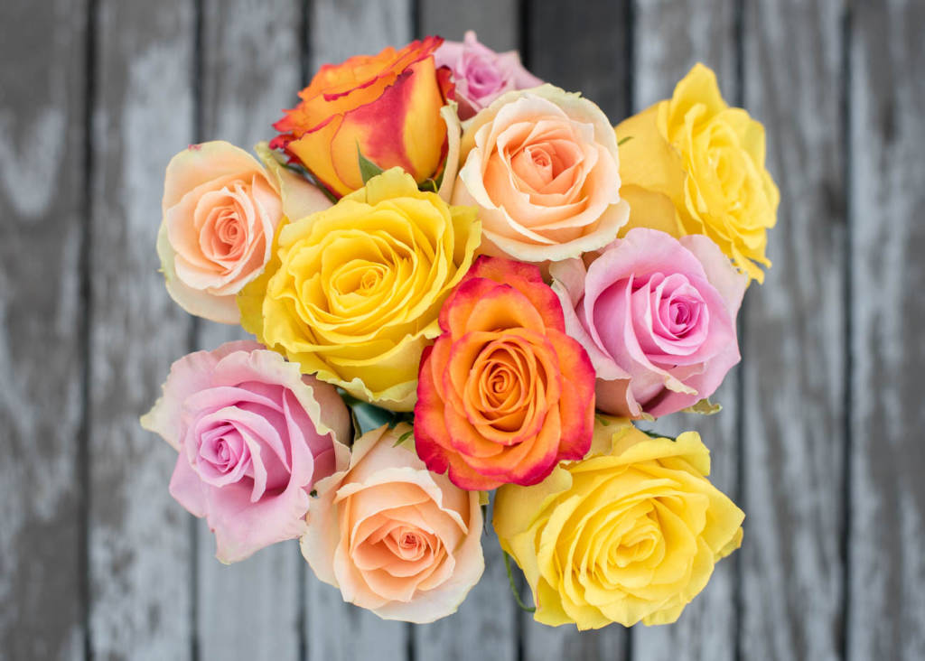 Ask ella do different colored roses have different meanings ask ella roses mightylinksfo