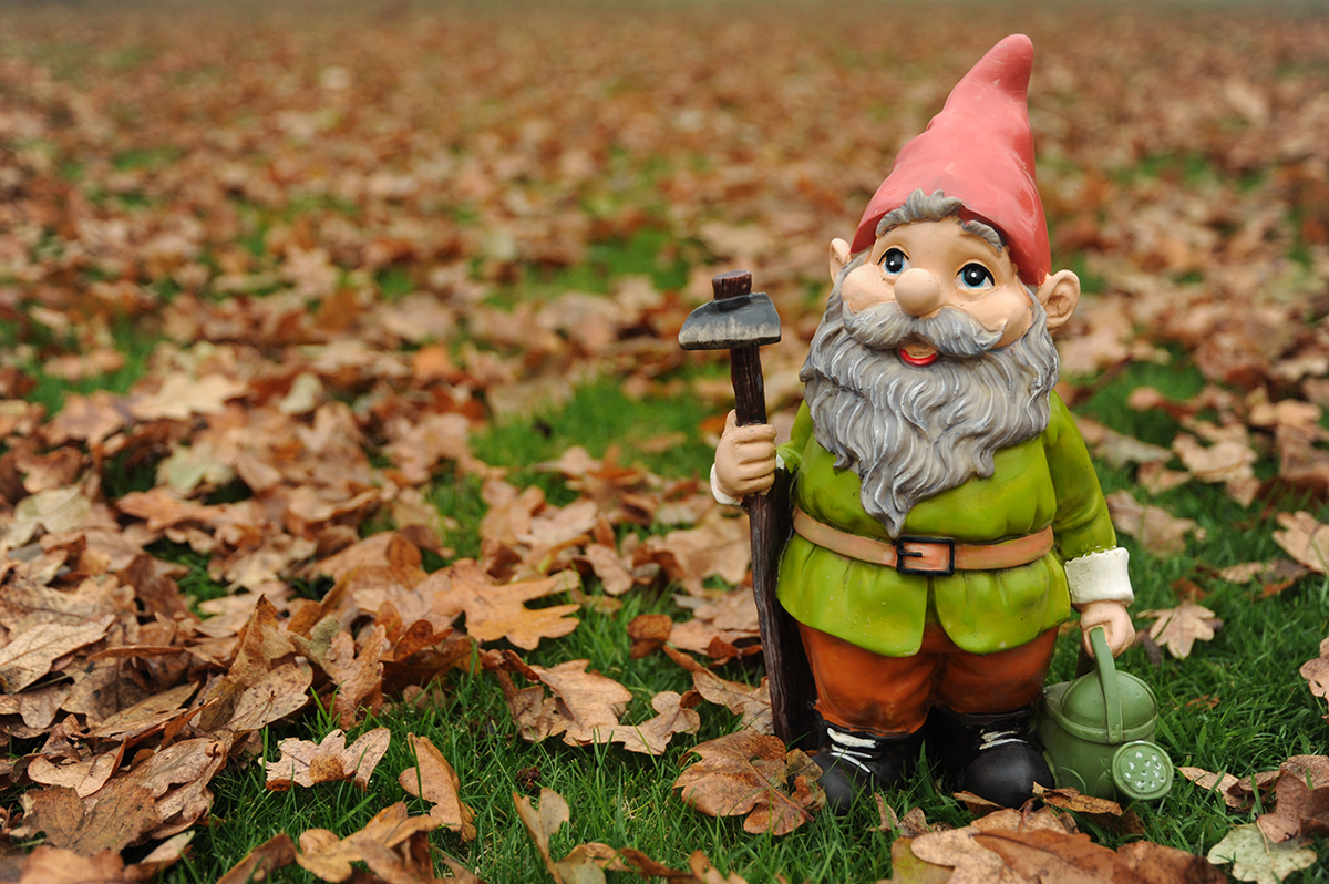 Gnome In Garden: The Story Behind Garden Gnomes Is More Compelling Than You