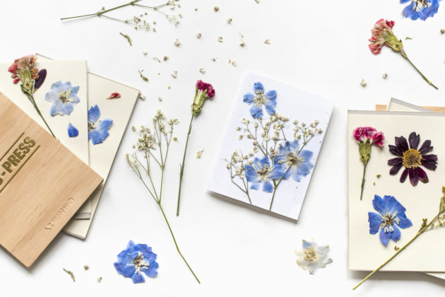 botanical holiday cards, crafts for kids